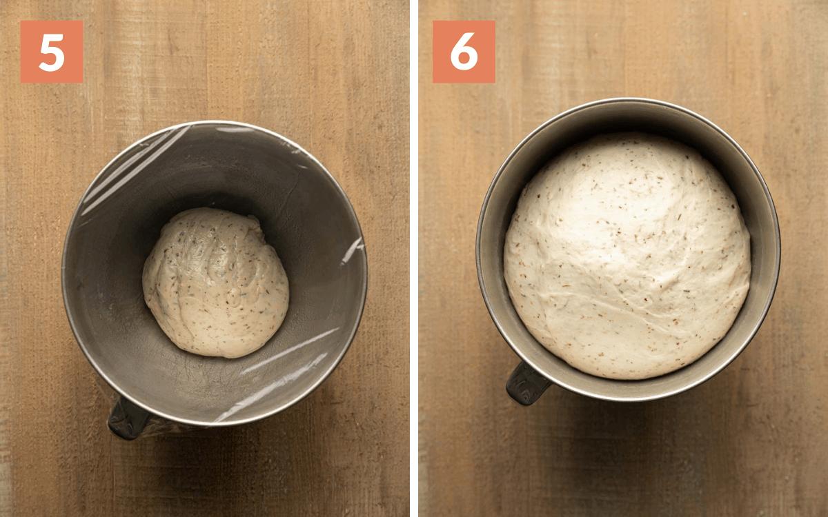 steps 5 & 6 dough before proofing  risen dough