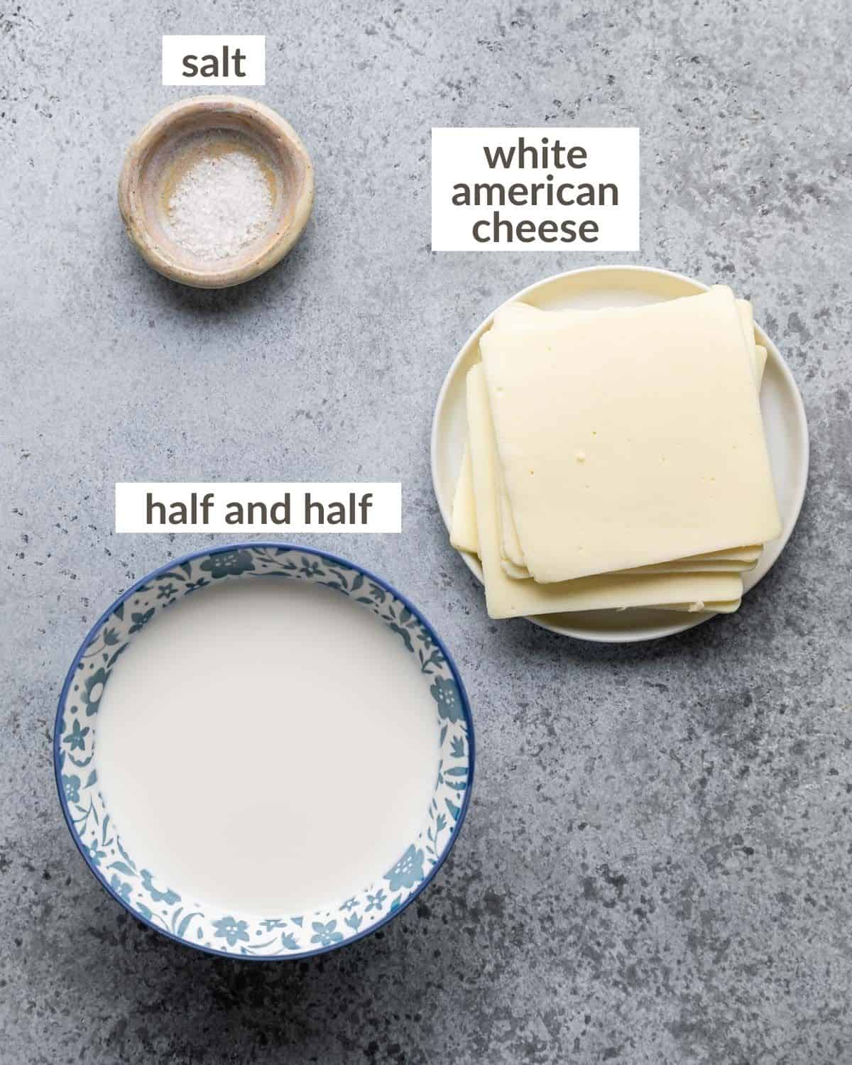 overhead of queso blanco ingredients